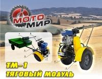Самоходная установка ТМ-1